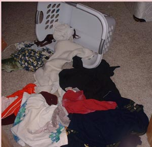 Laundry Layout created by Adrianna