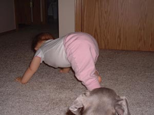 Adrianna's version of crawling