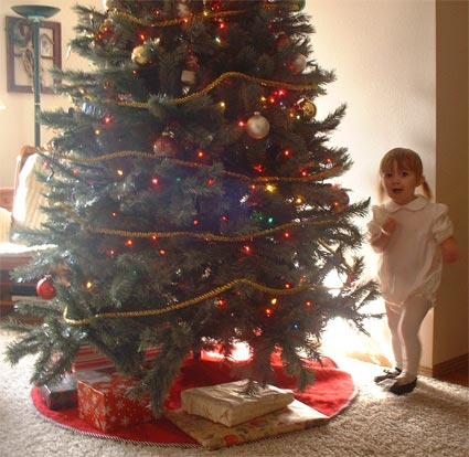 Adrianna admires the tree
